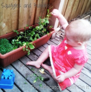 Source: The Best Herbs to Grow With Children