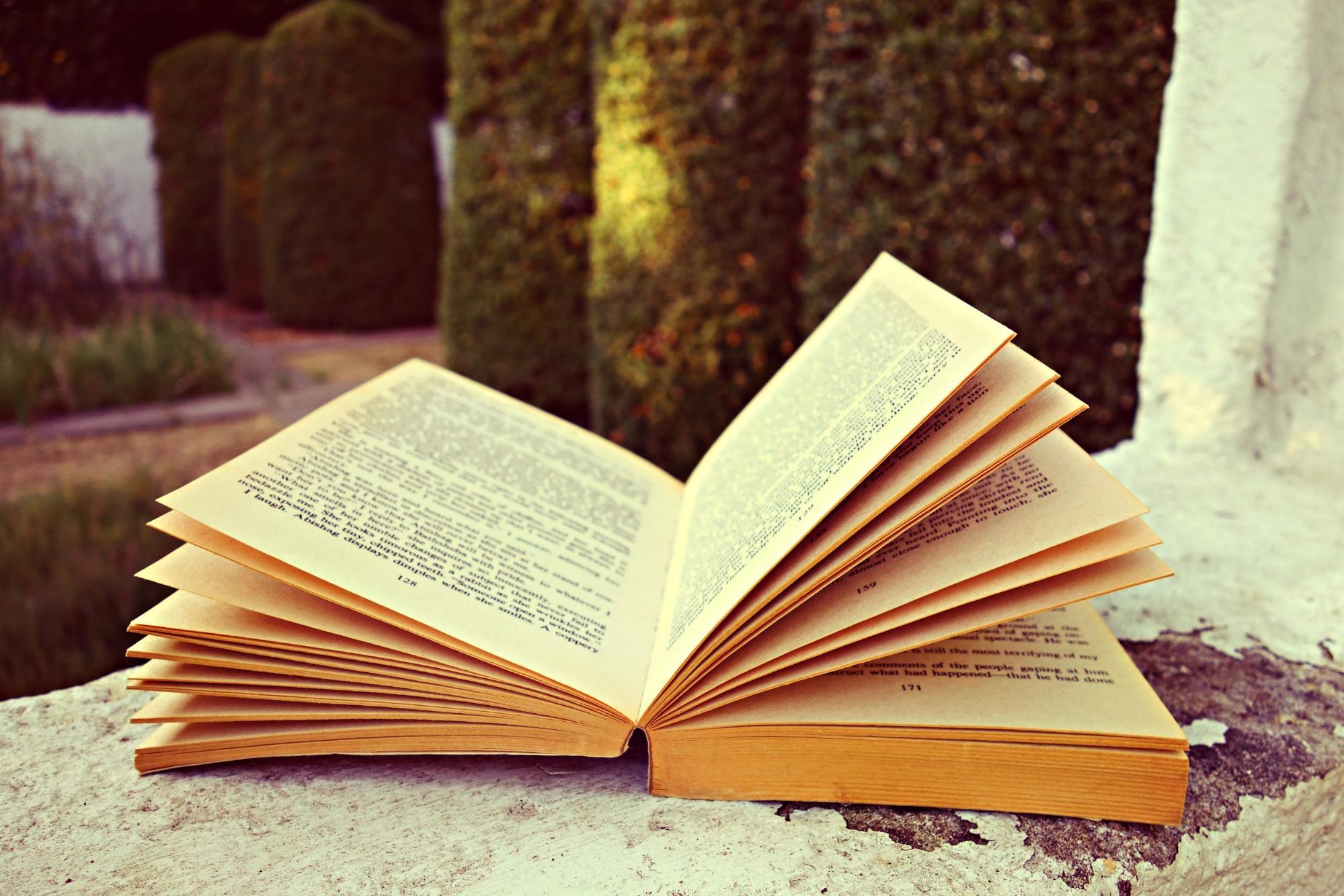 words, literature, open book